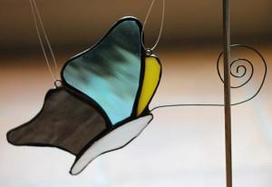 M1さんの蝶